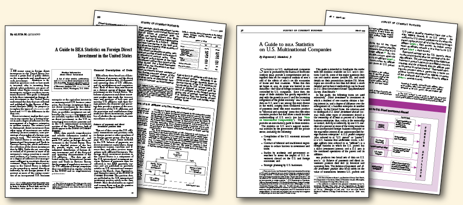 Image of pages from the BEA statistical guides.